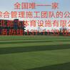 乐山全塑型橡胶跑道<包检测无味>德飞体育