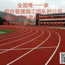 防城港环保塑胶跑道<点击查看详情>德飞体育图片