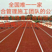 黄南EPDM环保塑胶跑道体育<有限公司欢迎您>!德飞体育图片