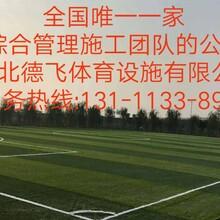 上饶混合型跑道《上海新团标》建设《有限公司欢迎光临》德飞体育图片