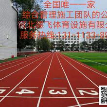 渭南运动场塑胶跑道<点击查看详情>德飞体育图片