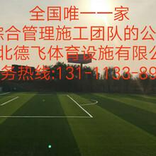 防城港环保塑胶跑道(欢迎您+有限公司欢迎您)德飞体育图片
