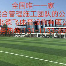 防城港环保塑胶跑道工程施工<股份有限公司,集团>-欢迎您德飞体育图片