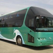 东台到泸州的大巴车票价多少钱图片