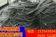 福建库存钢丝绳回收价格