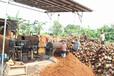 重庆腐殖土营养土有机肥屋顶轻质土生产厂家直供