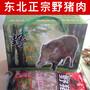 四川狍子肉批发代理价格成都哪里有卖狍子肉的多少钱一斤图片