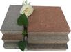 江蘇無錫透水磚,河南眾光陶瓷透水磚200100一平方米的價格