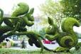 運城園林綠雕策劃設計工廠低價租售