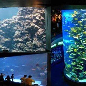 四川大型鱼缸热弯玻璃定制安装厂家服务