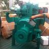 电调柴油机