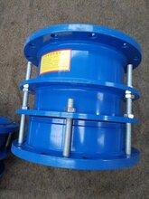 采购优质(VSSJA-2)B2F双法兰限位伸缩器、松套�L伸缩器图片