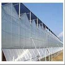 污泥干化处理温室