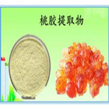 桃胶粉桃胶提取物20:1桃胶速溶粉浓缩粉