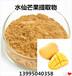 熱帶果王水仙芒提取物維生素A水仙芒果多糖80%水仙芒果纖維粉庵波羅果凍干粉
