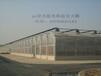 昌吉塔城石河子恒温智能温室大棚育苗室连栋温室大棚