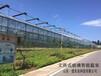 巴中恒溫智能溫室大棚育苗室連棟溫室大棚