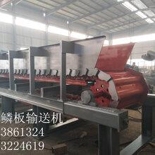 鑄件鏈板規格/鑄件鱗板機/自動鱗板輸送機/耐高溫輸送設備圖片