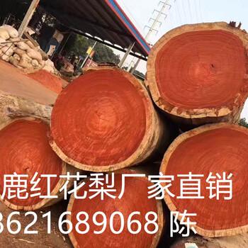 江西红花梨原木