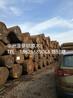 扬州塔利木是什么木,塔利木多少钱一方