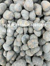 陶粒价格图片
