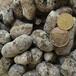 武汉陶粒厂家低价长期供货建筑陶粒,回填陶粒