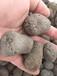 浙江优质陶粒的区别?优质陶粒取决于它的原材料,杭州陶粒混凝?#31890;?#38518;粒价格厂家直销