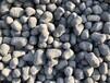 雞西陶粒建筑找坡屋面用哪種陶粒、雞冠陶粒高強度、黑龍江陶粒廠送貨