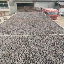 麗江陶粒濾料批發價格圖片
