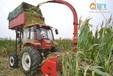 现货供应玉米秸秆收获机收割粉碎一体机自走式牧草收割青储机