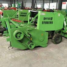 农田玉米秸秆粉碎打捆机耐用青贮牧草圆捆机芦苇方捆机图片