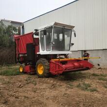 大型干濕玉米秸稈收割青儲機價格牧草粉碎回收機棉桿收割機圖片