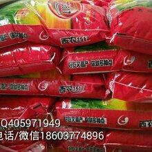 供应高产稳产半冬性强筋优质小麦品种西农3517图片