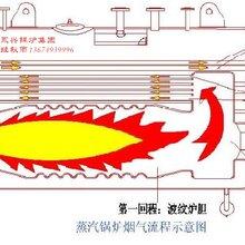 湿背式三回程燃气蒸汽锅炉图片