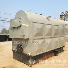 2吨活动炉排生物质蒸汽锅炉图片