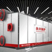 SZS40吨双锅筒纵置式燃油气蒸汽锅炉图片