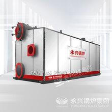 15吨天然气蒸汽锅炉运行原理_A级环保图片