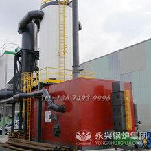 15吨生物质(燃煤)锅炉_工业蒸汽锅炉厂家图片