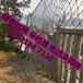 山體防護網