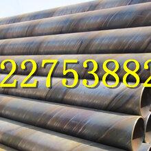 新疆大口径涂塑钢管厂家(畅享非凡)图片