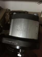 PGH4-3X/020RE11VE4全新原装齿轮泵备有5件现货图片