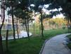 龙口海景房碧海苑一楼带院个人房源龙口碧海苑最新房价