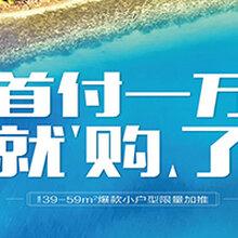 山东龙口海景房首付1万海边安个家2019年龙口海景房最新消息图片
