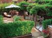 山東龍口海城廣場一樓送55平超大花園萬科物業龍口海景房的價格