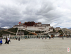 石家庄迅飞快递专业西藏新疆边远专线