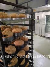 科朝達廠家直銷曲奇烤爐面包商用烤箱多功能旋轉爐圖片