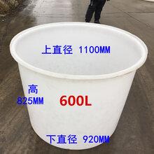 加厚牛筋塑料大水桶家用食品级腌菜圆桶洗澡大水缸酿酒化工搅拌桶600L