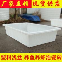 大号塑料浅盆养殖箱380L厂家大量供应价格从优
