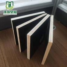 濮陽工地黑模板足厚度楊木材質膠合板周轉次數高星冠木業圖片