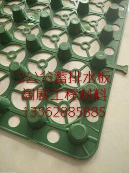 新型排水板/2公分蓄排水板/塑料排水板价格公道